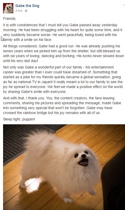 Rip+gabe+the+dog+f_7005ae_6153765.jpg