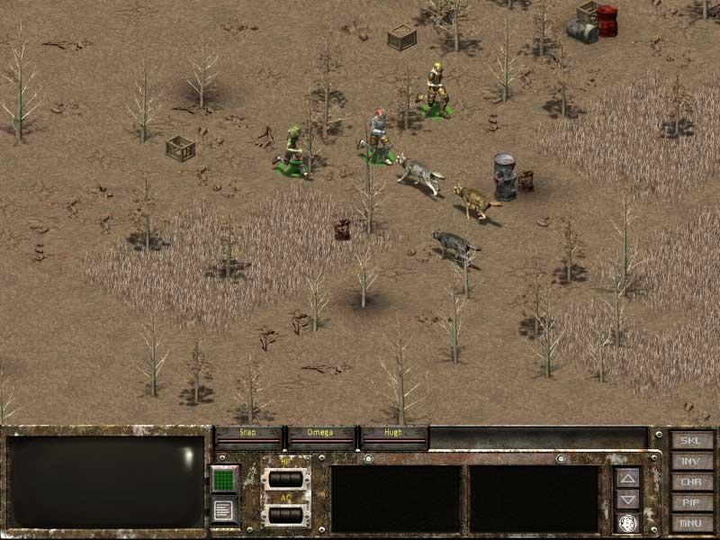 Desert battle with dogs