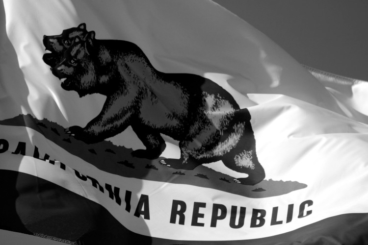 NCR Flag