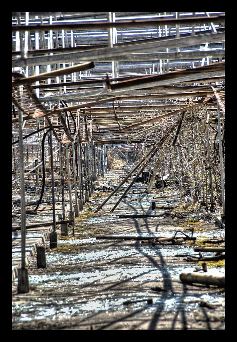 Greenhouses II